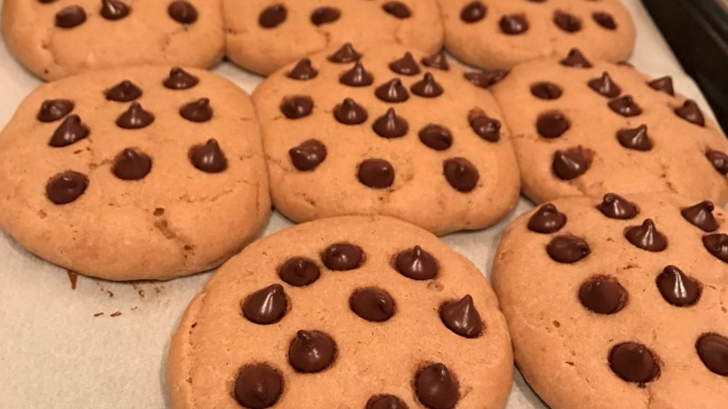 Chocolate Chip Sugar Free Protein Cookies